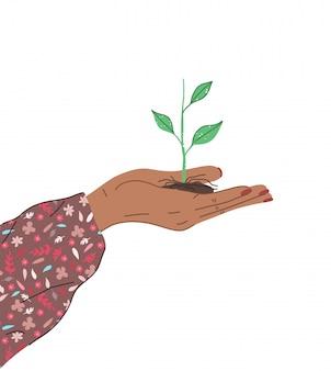 女性の手は、農業や植栽のための若い植物を保持しています