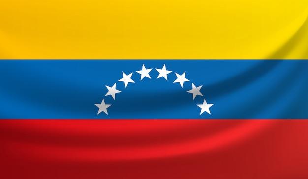 ベネズエラの旗を振っているベクトルイラスト