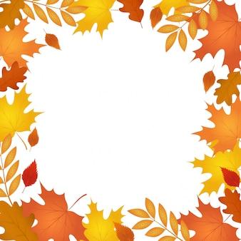 秋の落ち葉。秋のフレーム。
