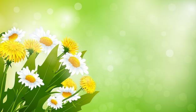 タンポポと鎮静の花束
