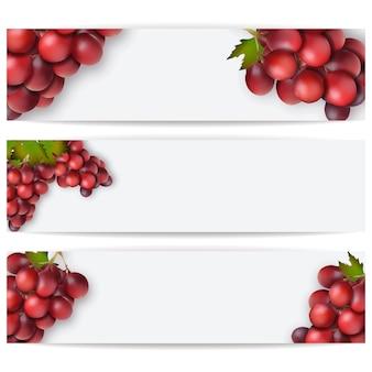 現実的なブドウのカードまたはラベル