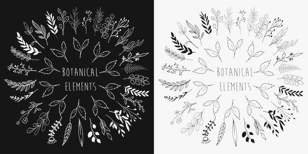 手描きの花の要素のコレクション
