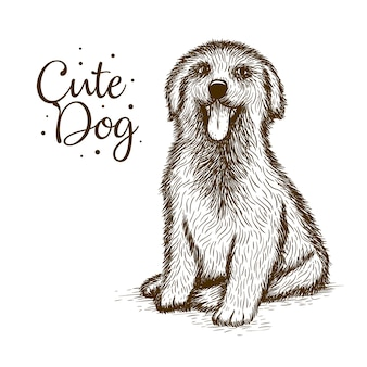 かわいい犬の手描き