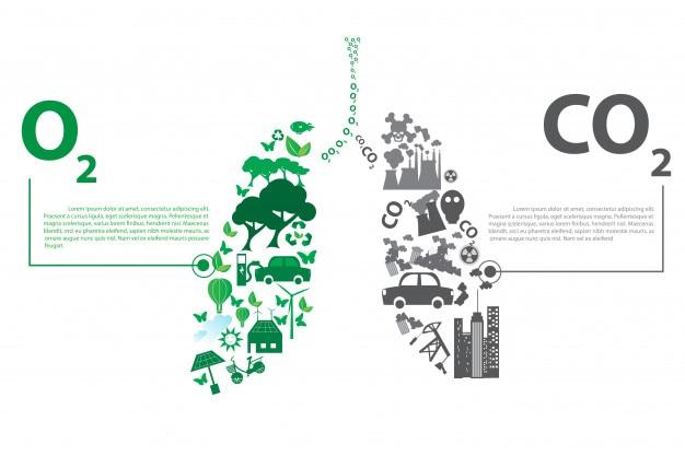 Зеленые противоположности города с элементами концепции экологического легкого