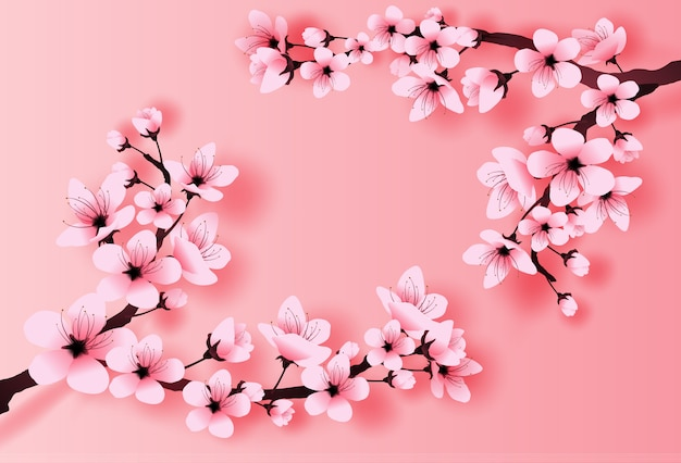 Концепция вишневого цвета весеннего сезона