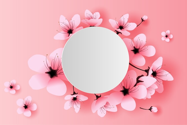 Белый круг весенний сезон концепция вишни в цвету