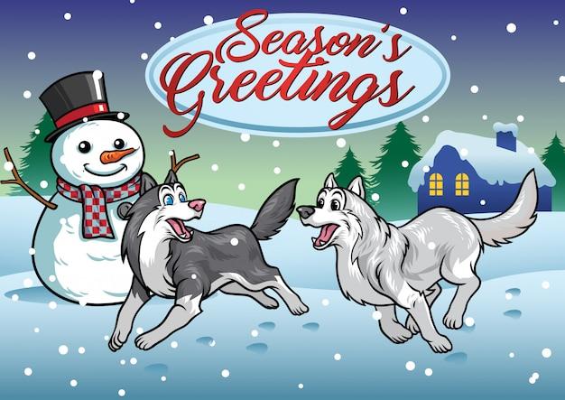 Хаски собаки играют в снегу