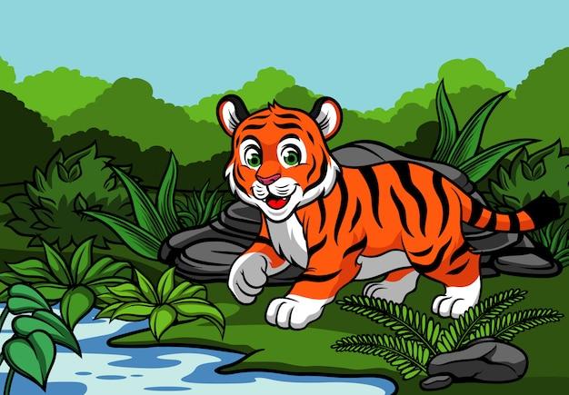 Молодой тигр в джунглях