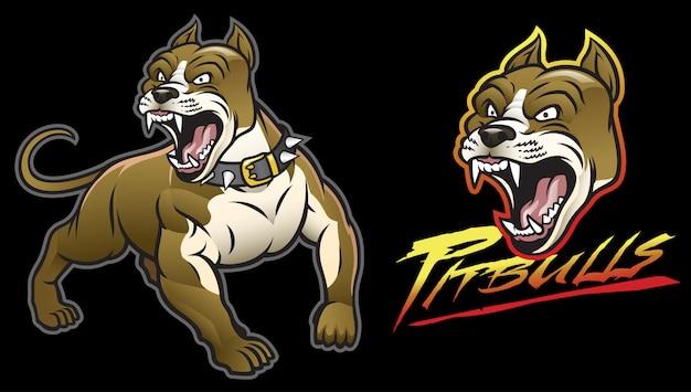 怒っているピットブル犬