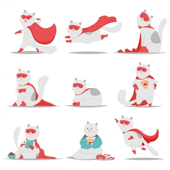 Набор символов любимчика мультфильма вектора кота супергероя милый изолированный на белой предпосылке.