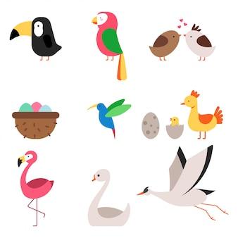 かわいい漫画鳥ベクトルフラットアイコンセットホワイトバックグラウンド上に分離されて。