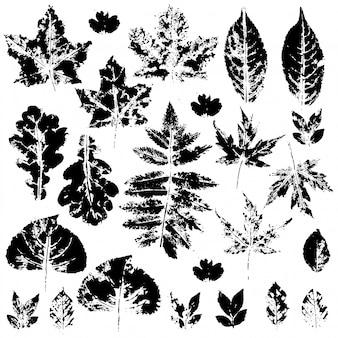 Черные силуэты осенних листьев на белом фоне