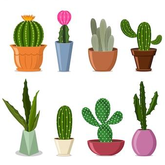 Кактусы в горшках установлены. векторная иллюстрация домашних декоративных растений с цветами изолированы