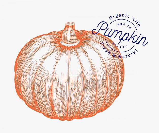 Иллюстрация тыквы. нарисованная рукой иллюстрация овоща вектора. выгравированный стиль хэллоуин или день благодарения