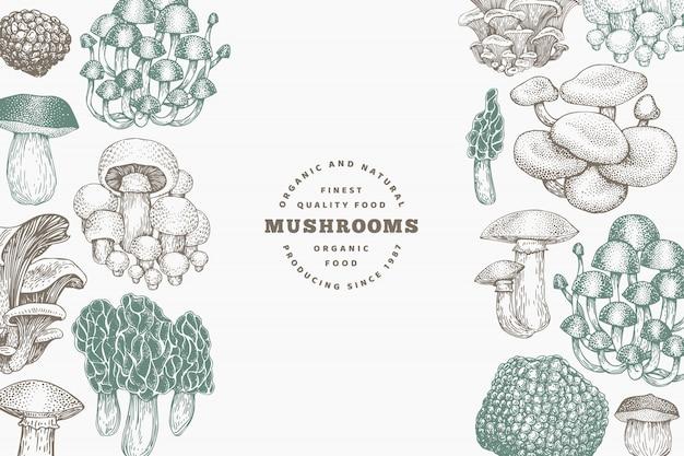 Грибы дизайн шаблона. вектор рисованной иллюстрации. гриб в стиле ретро. осенняя еда.