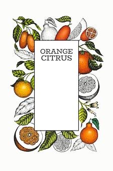 Цитрусовый шаблон. нарисованная рукой иллюстрация цвета плодоовощ.