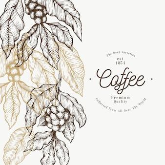 Шаблон ветви кофейного дерева