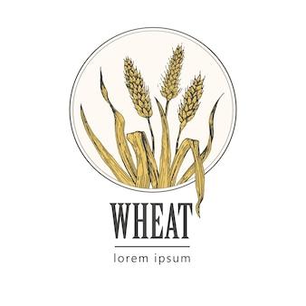 パン屋さんのレトロなパンやビールのロゴ、小麦、ヴィンテージ