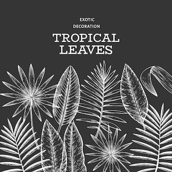 Тропические растения баннер. нарисованная рукой иллюстрация листьев тропического лета экзотическая на доске мела. листья джунглей, пальмовые листья выгравированы в стиле. винтажный фон