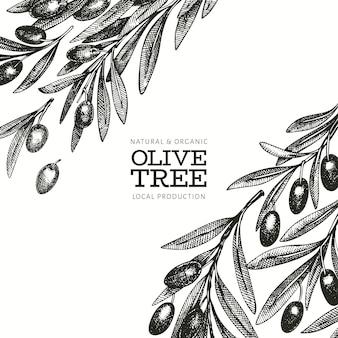 オリーブの枝のテンプレート。手描きの食べ物イラスト。刻まれたスタイルの地中海植物。レトロな植物の写真。