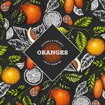 柑橘系の果物のテンプレート。