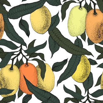 マンゴーツリービンテージシームレスパターン。植物のフルーツの背景。刻まれています。レトロなイラスト