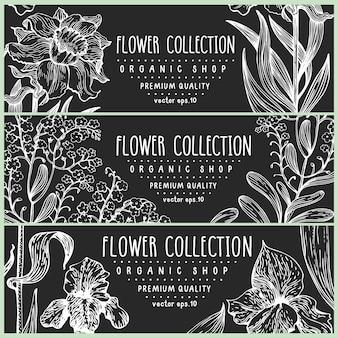 手描きの花。ベクトルはチョークボードにスケッチしないで私を忘れてしまった。ヴィンテージ植物イラスト