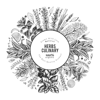 料理用のハーブのイラスト。手描きヴィンテージの植物図。刻まれたスタイル。