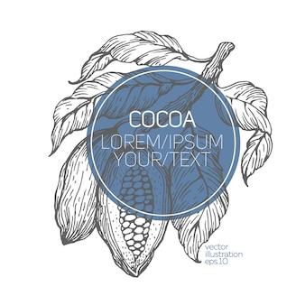 Какао-бобы векторные иллюстрации.