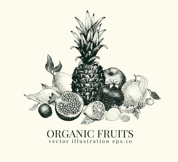 果物は手描きの背景イラストです。