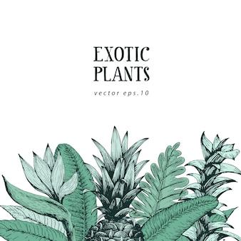 手でブラウンの植物の背景に手描きのエキゾチックな植物とパイナップル。