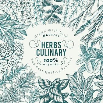 料理用のハーブやスパイスの背景。手描きのレトロな植物図。