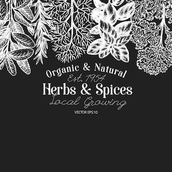 料理用のハーブやスパイスの背景。チョークボードに描かれたレトロな植物図を手します。