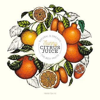 柑橘系のデザイン手描きの背景色フルーツイラスト。刻まれたスタイルレトロな柑橘系のフレーム。