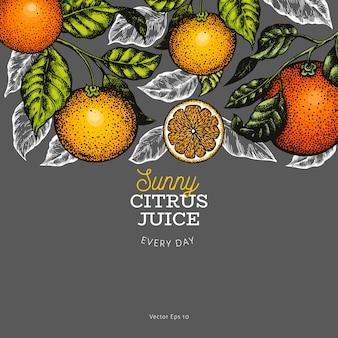 柑橘類の背景
