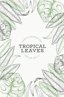 Баннер тропических растений.