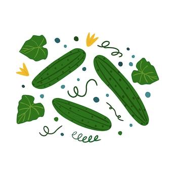 きゅうりと葉。手描き野菜のプリント。