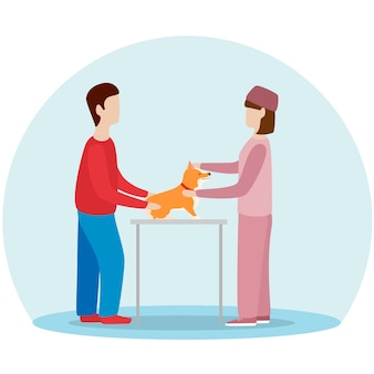雌獣医子犬犬。ウェールズコーギー予防接種、診療所の検討。