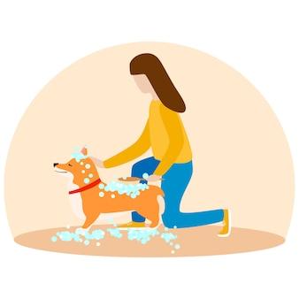 女性が彼女の子犬ウェールズコーギーを洗う。石鹸の泡で犬。グルーミングコンセプトの子犬。