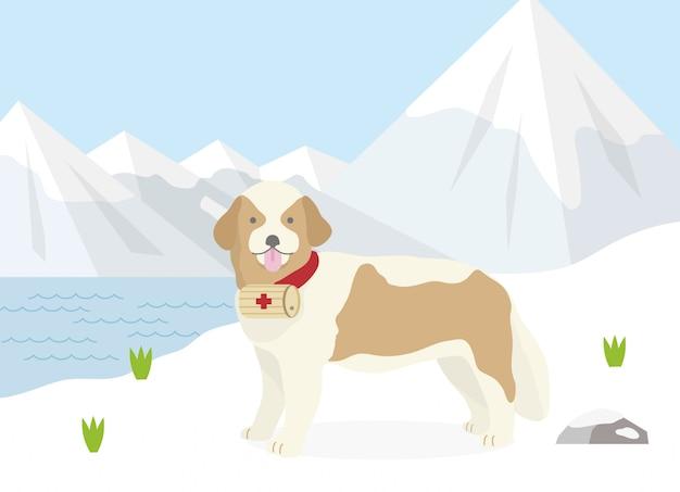 Собака-спасатель альп