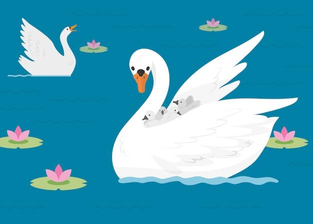 Семья лебедей на озере