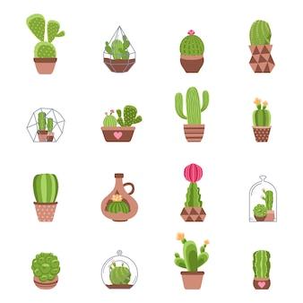 Набор иконок кактус
