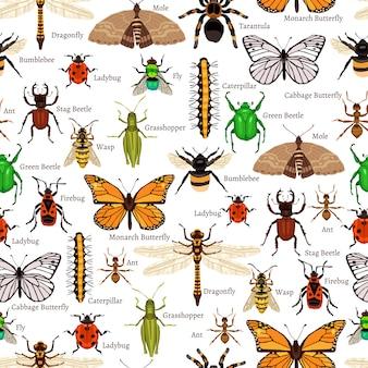 昆虫のシームレスパターン