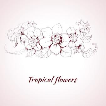 熱帯の花のスケッチ