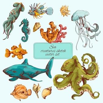 海の生き物スケッチ色