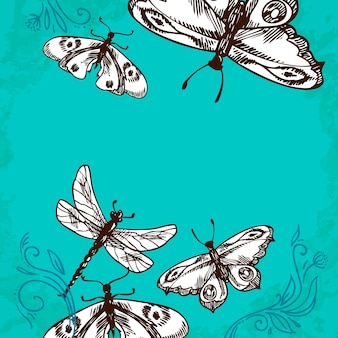 蝶とトンボの図