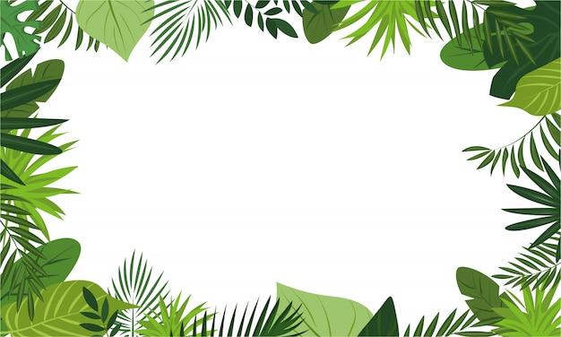 新鮮な熱帯雨林のコンセプトフレームの背景、漫画のスタイル