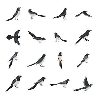 カササギカラス鳥のアイコンセットフラットスタイル