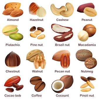 Набор макетов с орехами