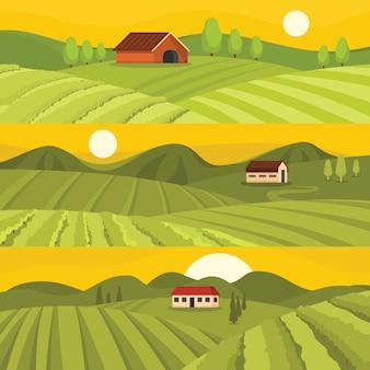 ぶどう畑のワインの背景